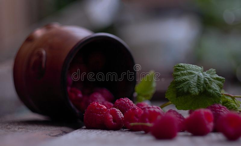 Mug with raspberries on wooden background. Summer garden beautiful raspberry with a sprig of raspberries vegetarian raspberry drops royalty free stock photography