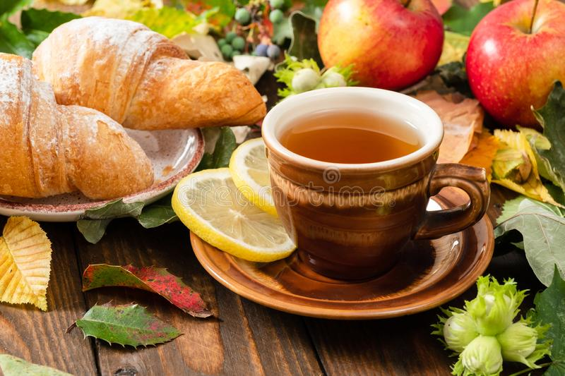 Mug of tea with lemon, croissant, autumn fall leaves, fruits on wooden background. Cozy home breakfast, autumn hygge style, royalty free stock photos