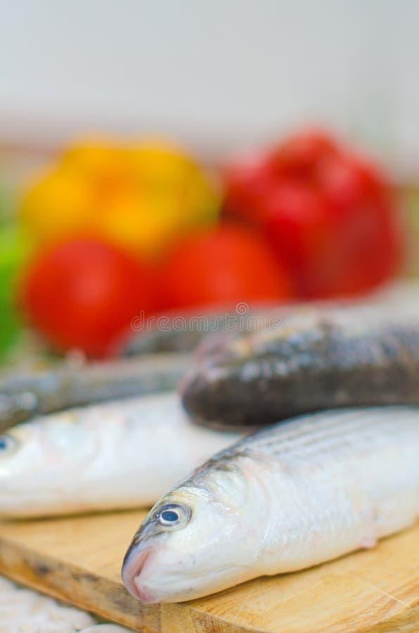 Download Mugil cephalusvissen stock afbeelding. Afbeelding bestaande uit maaltijd - 39118547