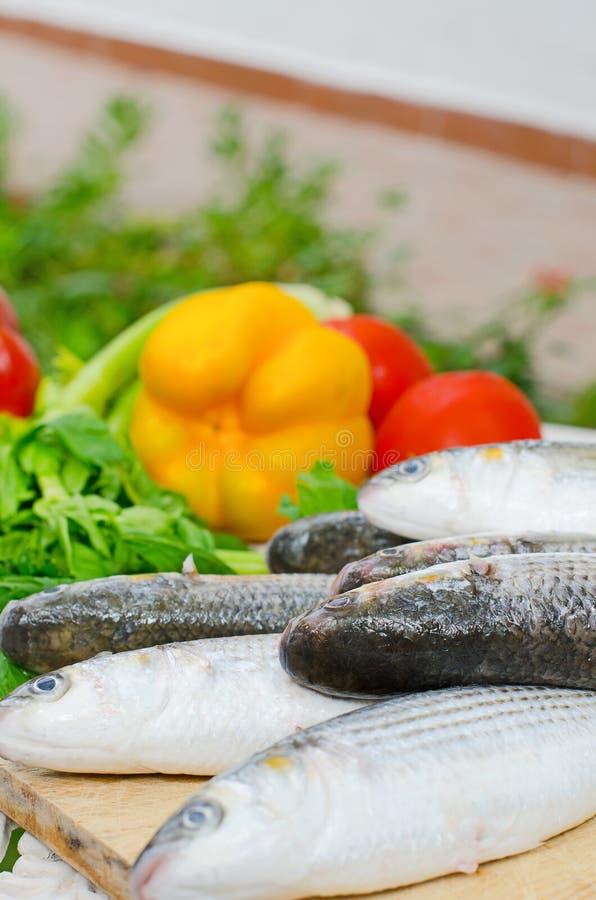 Download Mugil cephalusvissen stock afbeelding. Afbeelding bestaande uit groenten - 39118553