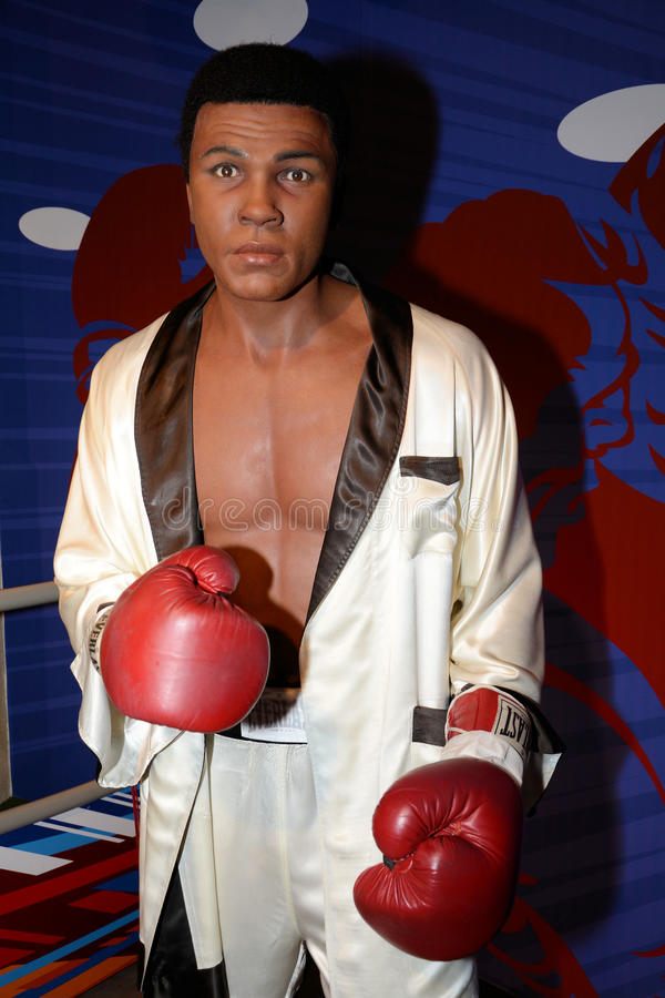 Muhammad Ali royalty-vrije stock afbeelding
