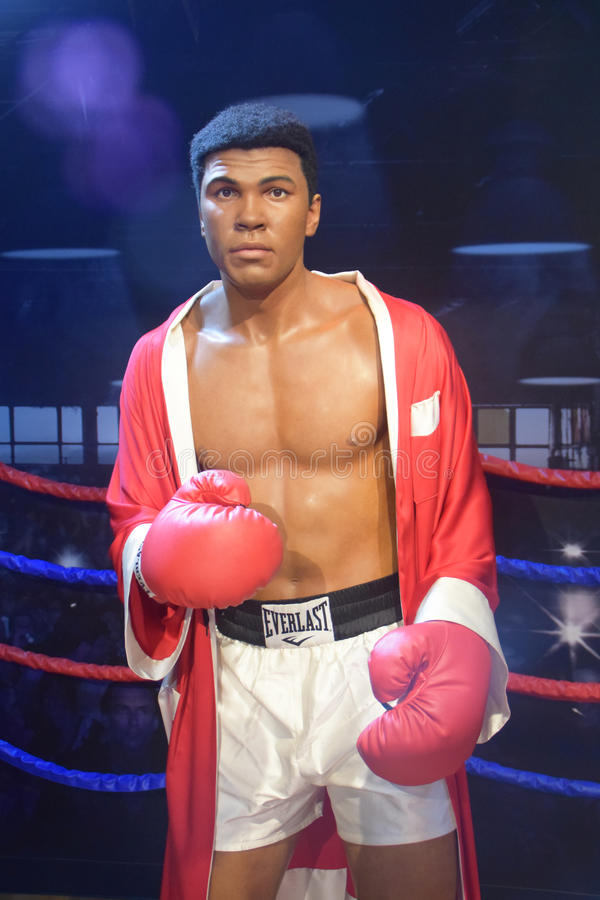 Muhammad Ali Professional Boxer arkivbilder