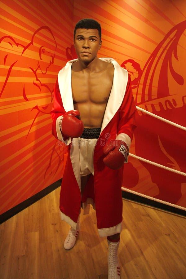 Muhammed Али стоковое изображение rf