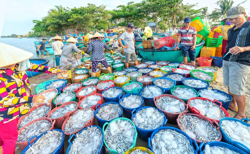 Mui Ne, Vietnam, el 23 de abril de 2018: Comercialice el pueblo pesquero temprano cuando los pescados vendedores de compra ocupad foto de archivo
