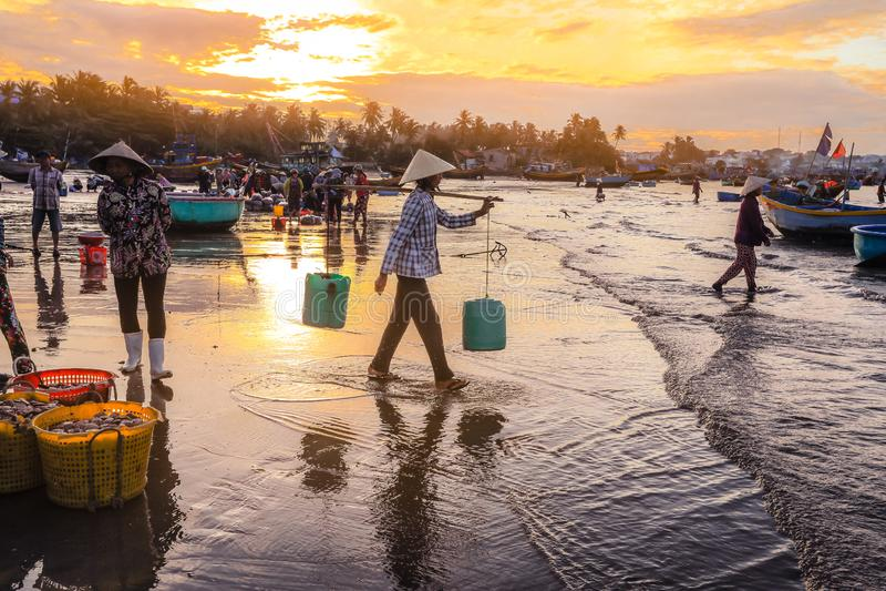 Famous fishing village, tourist destination in Mui ne, Vietnam. Mui ne, Vietnam-January-27, 2019 : Local fishermen are working very early morning at famous royalty free stock photo