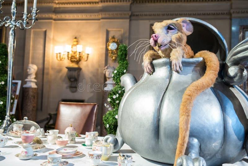 Muis in een theepot Alice in sprookjesland stock foto