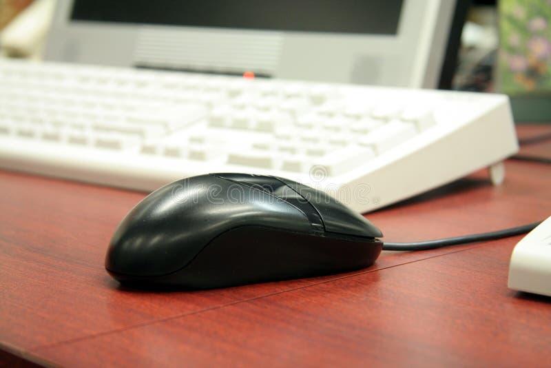 Muis en computer stock afbeeldingen