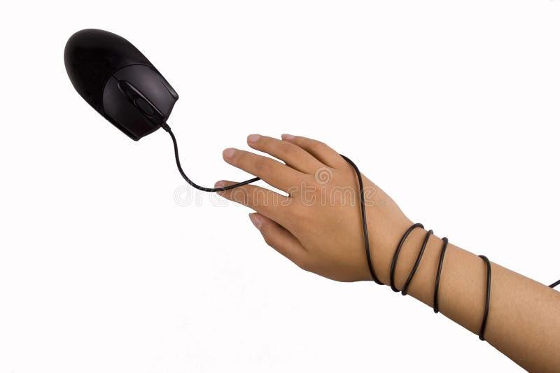 Muis en Handen stock fotografie