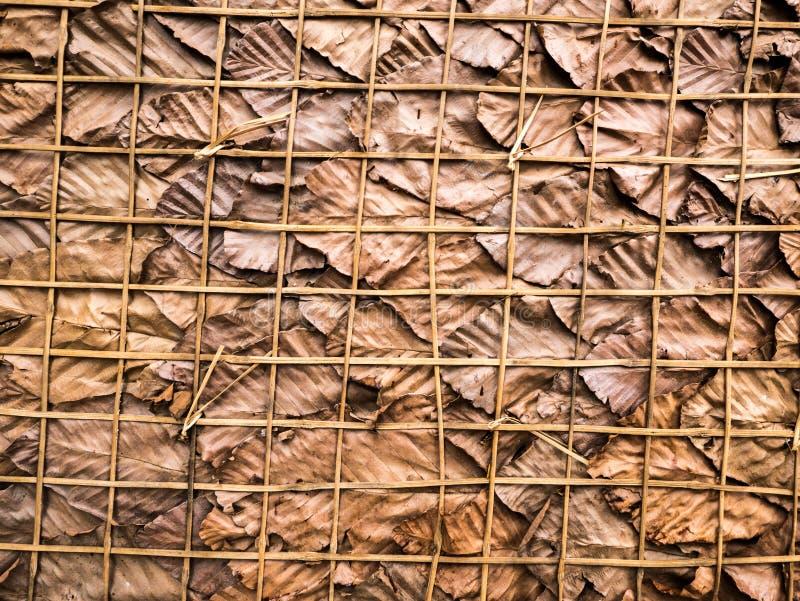 Muita folha seca como o fundo imagens de stock