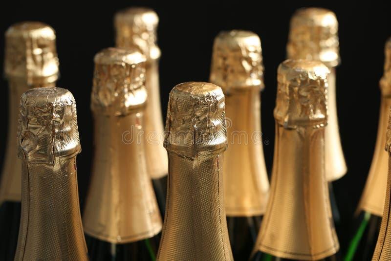 Muitas garrafas do champanhe no fundo escuro imagens de stock royalty free