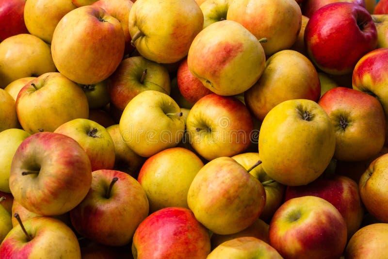 Muitas maçãs - fundo do fruto da maçã fotografia de stock royalty free