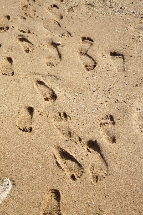 Muitas pegadas na areia na praia fotos de stock
