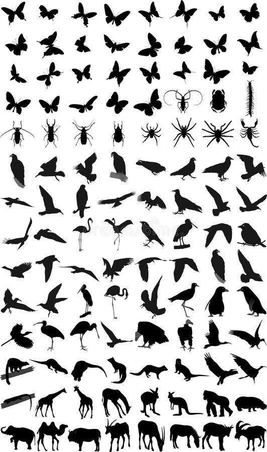Muitas silhuetas dos animais ilustração do vetor