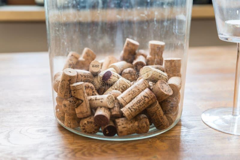 Muitas taças de vinho diferentes num grande refrigerador de champanhe fotos de stock royalty free