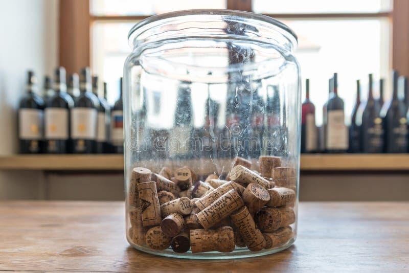 Muitas taças de vinho diferentes num grande refrigerador de champanhe imagem de stock