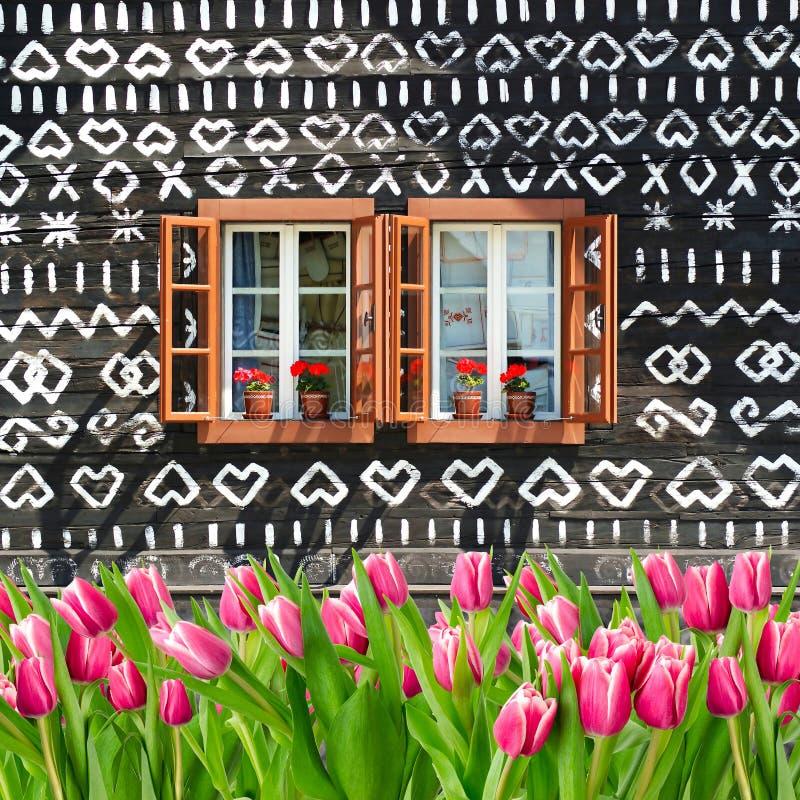 Muitas tulipas na frente da casa de campo de madeira pintada do verão fotos de stock royalty free