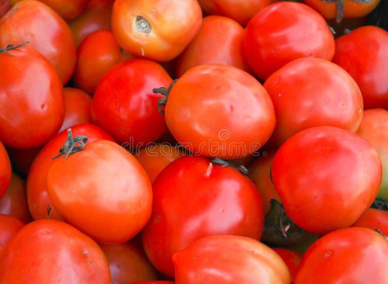 Download Vermelho do tomate imagem de stock. Imagem de saúde, cozinhar - 29829133