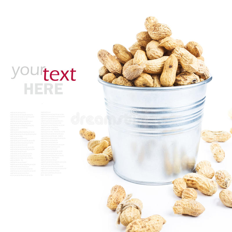 Muitos amendoins nos escudos em um metal bucket o close up (com rem fácil imagens de stock