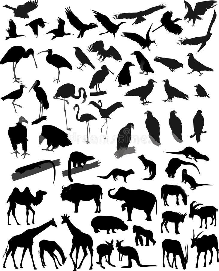 Muitos animais das silhuetas ilustração royalty free