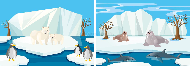 Muitos animais no Polo Norte ilustração stock