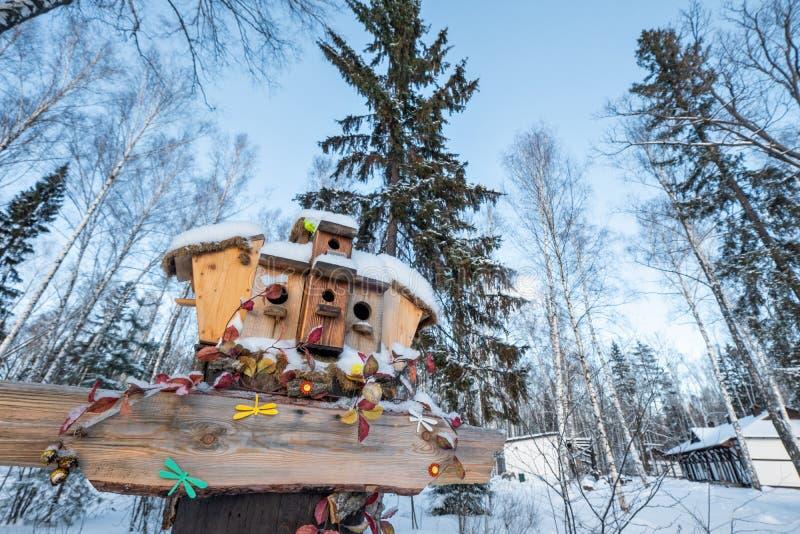 Muitos aviários, para pássaros e alimentadores na árvore Casas para pássaros no inverno sob a neve na árvore pássaro imagens de stock