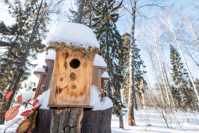 Muitos aviários, para pássaros e alimentadores na árvore Casas para pássaros no inverno sob a neve na árvore pássaro fotos de stock