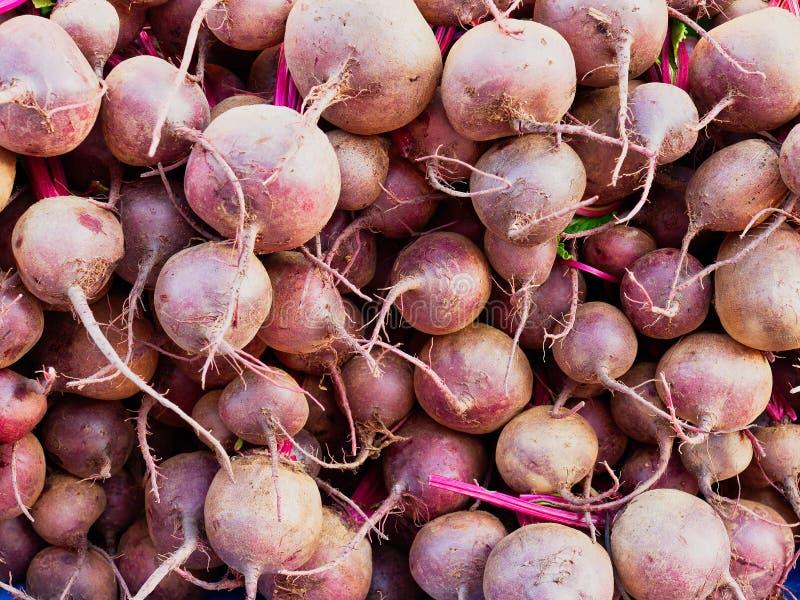 Muitos bulbos frescos das beterrabas no mercado de frutas e legumes fresco fotos de stock royalty free
