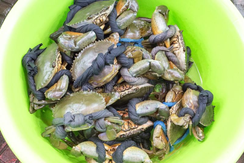 Muitos caranguejos em uma cesta fotografia de stock