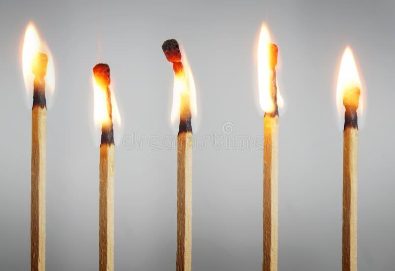 Muitos fósforos de queimadura imagens de stock royalty free