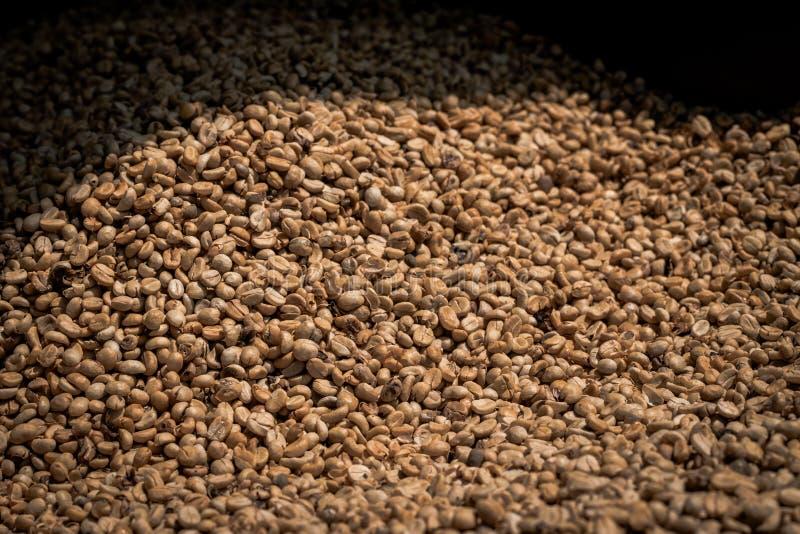 Muitos feijões de café crus foto de stock