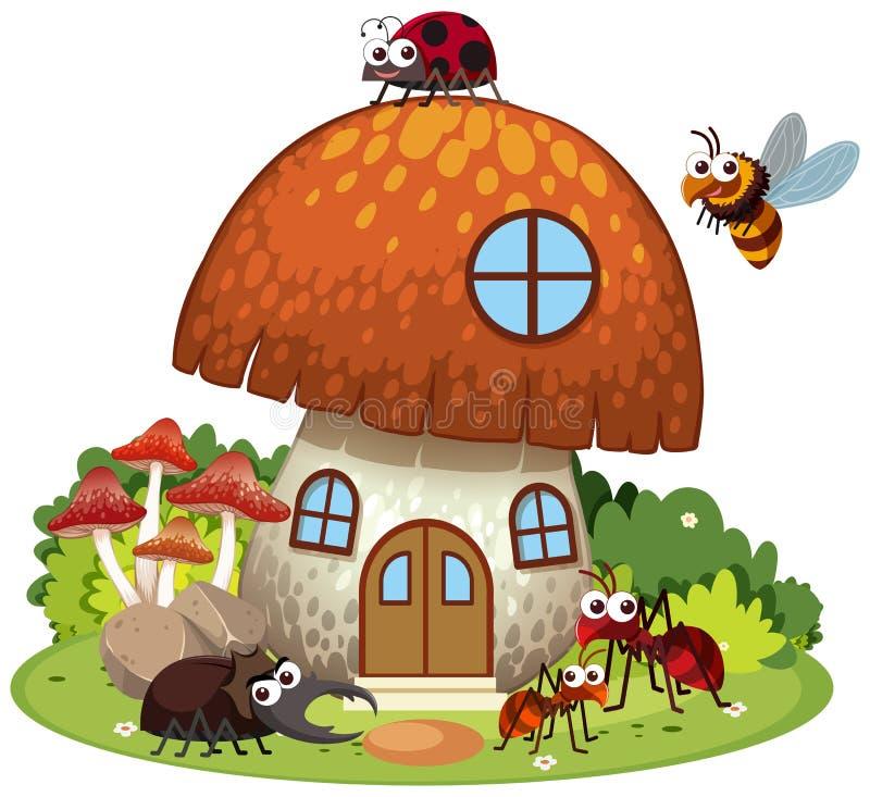 Muitos insetos que vivem na casa do cogumelo ilustração royalty free