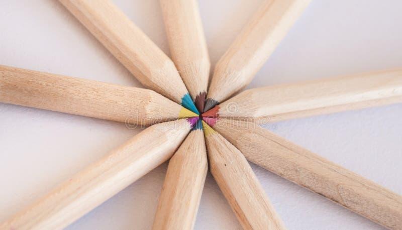 Muitos lápis coloridos diferentes Macro do close-up foto de stock