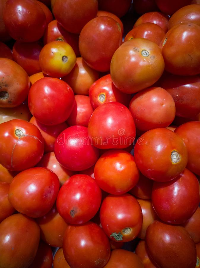 Muitos tomates em uma caixa fotografia de stock royalty free