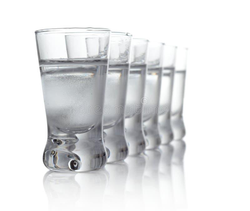 Muitos vidros da vodca isolados no fundo branco imagem de stock