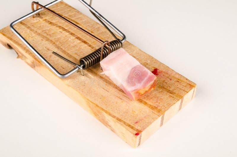 Muizeval met bacon stock afbeeldingen