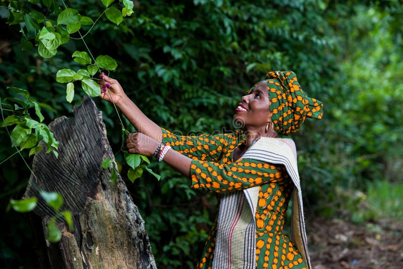 Mujer africana que camina en naturaleza y que sostiene una planta foto de archivo