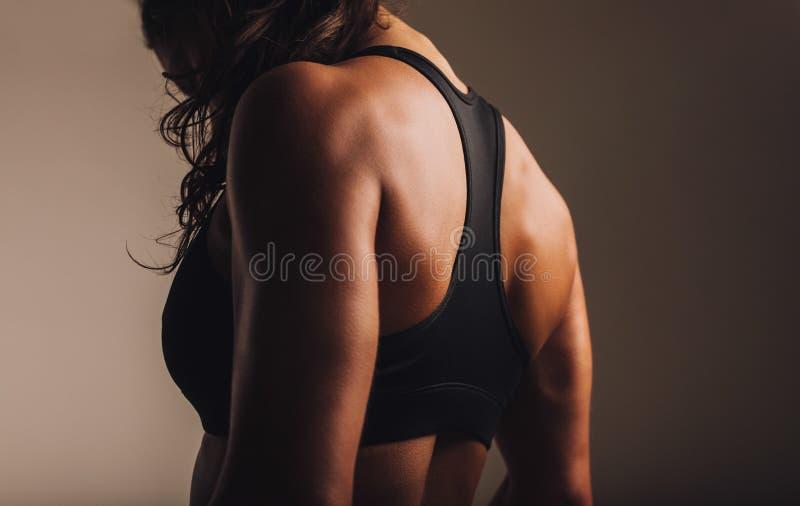 Mujer apta y muscular en sujetador de los deportes imagen de archivo