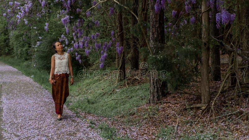 Mujer asiática en sarong que camina en la acera cubierta con los pétalos de la glicinia imágenes de archivo libres de regalías