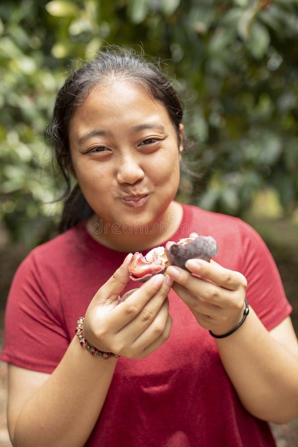 Mujer asiática que come el mangostán fresco en campo de la plantación de la fruta imágenes de archivo libres de regalías