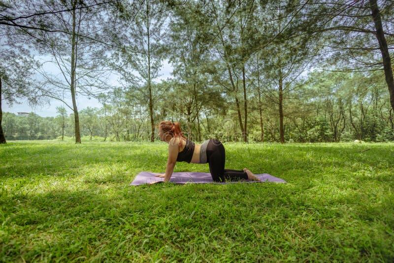 Mujer asiática que hace la yoga al aire libre foto de archivo