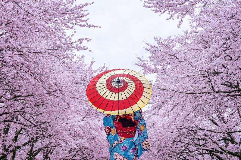 Mujer asiática que lleva el kimono y la flor de cerezo tradicionales japoneses en la primavera, Japón foto de archivo