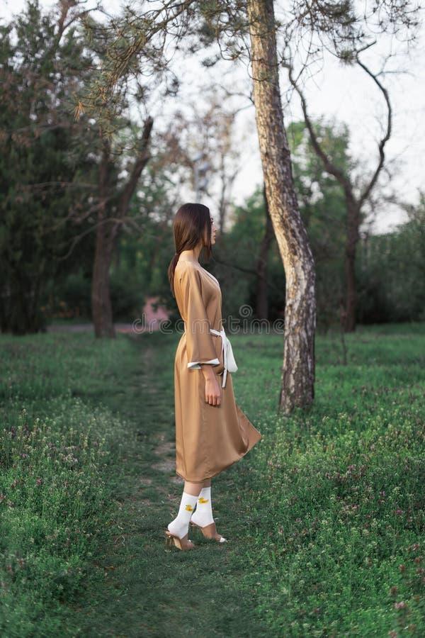 Mujer asi?tica en kimono japon?s tradicional al aire libre foto de archivo