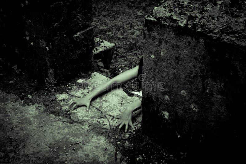 Mujer asustadiza del horror imagenes de archivo