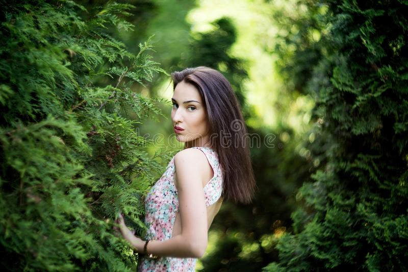 Mujer atractiva con el vistazo voraz en jardín Naturaleza fotos de archivo libres de regalías