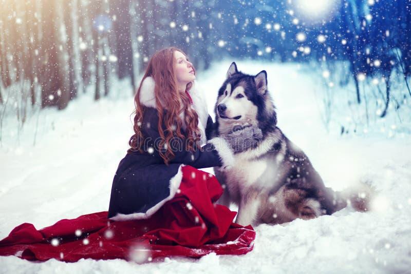 Mujer atractiva con los perros imagenes de archivo