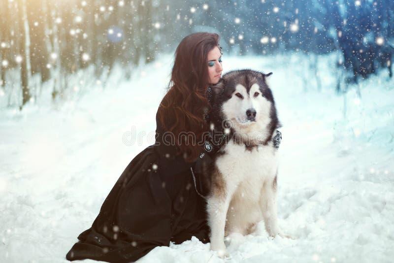 Mujer atractiva con los perros foto de archivo libre de regalías