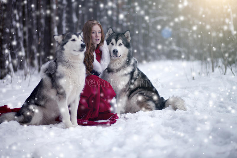Mujer atractiva con los perros imágenes de archivo libres de regalías