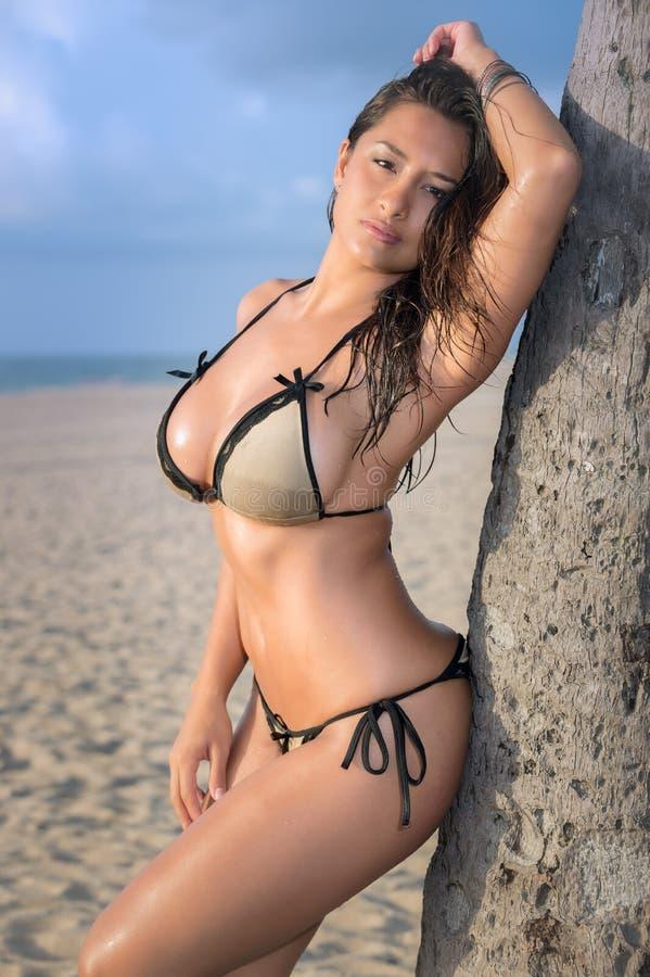 Mujer atractiva en una playa que se inclina en una palmera fotografía de archivo