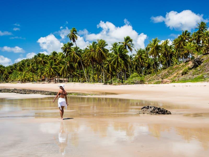 Mujer atractiva que camina a lo largo de la playa con la opinión sobre un día de verano imagen de archivo