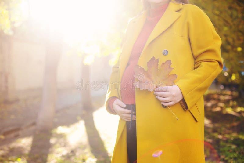 Mujer bastante embarazada de los jóvenes en el parque del otoño fotos de archivo